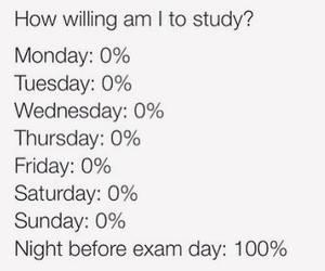 exam, study, and funny image