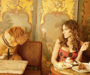 sex and the city, dog, and Carrie Bradshaw image