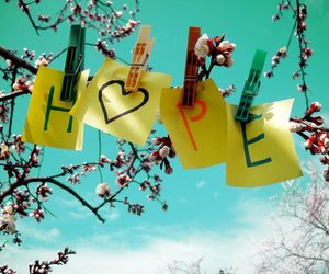 hope, text, and flowers image