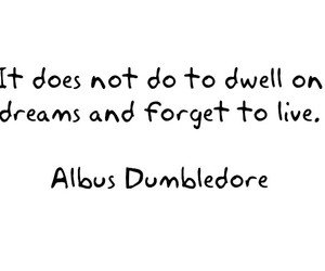 dreams, dumbledore, and harry potter image