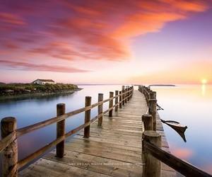 amazing, bridge, and heart image