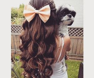 bow, hair, and dog image
