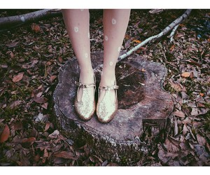christie dupree, gold shoes, and oxfords image