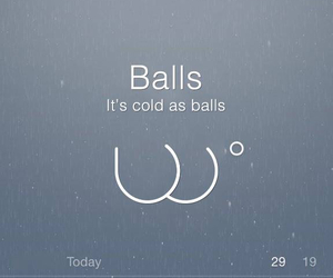 funny, youknow, and windchill image