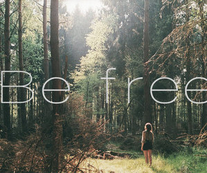 free, freedom, and life image