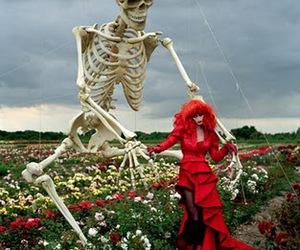 skeleton, red, and tim walker image