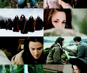bella swan, books, and edward cullen image