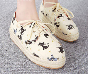 cats and shoes image