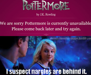 luna lovegood, pottermore, and harry potter image