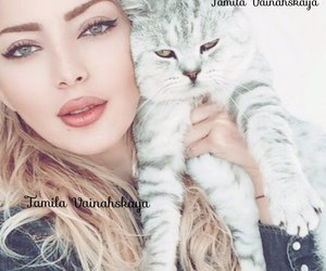 beauty, cat, and kavkaz image