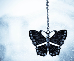 blue, cute, and butterfly image