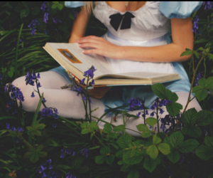 alice in wonderland, photography, and alternative image