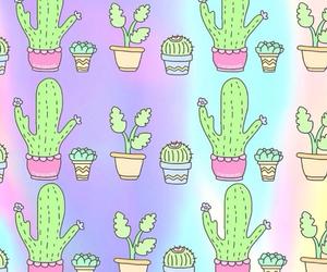 background, cactus, and grunge image