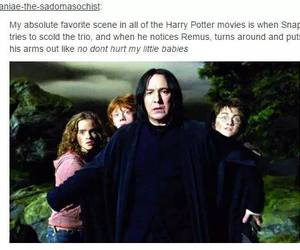 harry potter, hermione granger, and snape image
