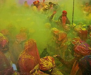 colour, green, and india image