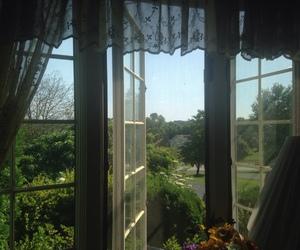 nature, window, and grunge image