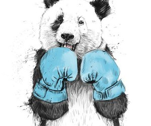 panda, animal, and art image