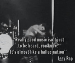 iggy pop, music, and hallucination image