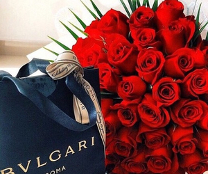 rose, flowers, and bvlgari image