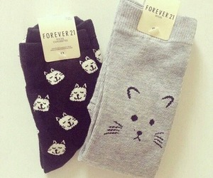 cat, socks, and cute image