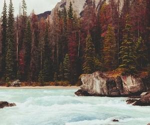 beautiful, lake, and water image