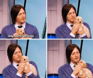 Hot, norman reedus, and the walking dead image