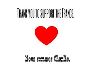 france, solidarity, and thank you image