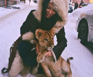 animal, girl, and lion image
