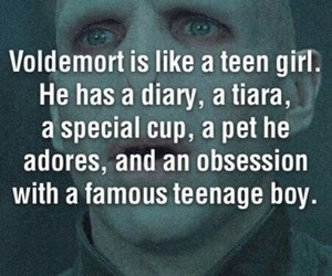harry potter, voldemort, and funny image