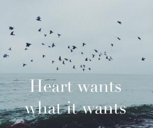 heart, love, and selena gomez image