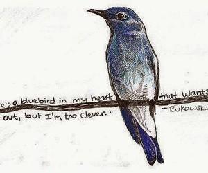 bird, Bukowski, and blue image