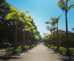 brazil, happy, and places image