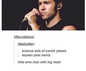 fall out boy and pete wentz image