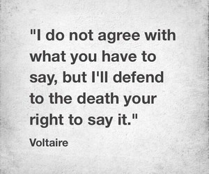 quotes and voltaire image