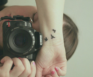 tattoo, bird, and camera image