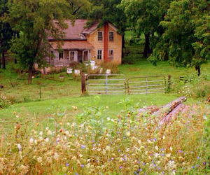 country living, flowers, and hope image