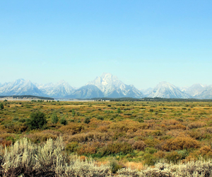 mountains and grand tetons image