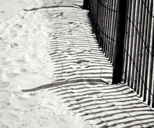 beach, fence, and shadows image