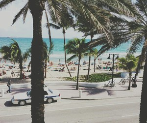 ocean, palm trees, and beach image