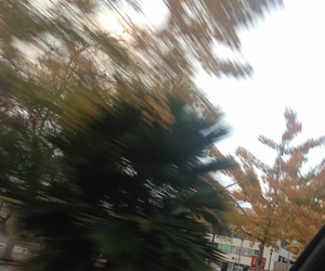 blurry, green, and grunge image