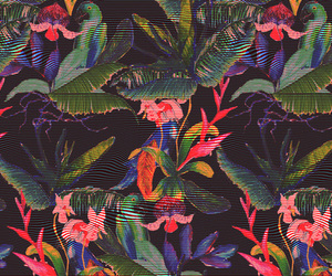 flowers, background, and jungle image