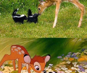 bambi, disney, and funny image