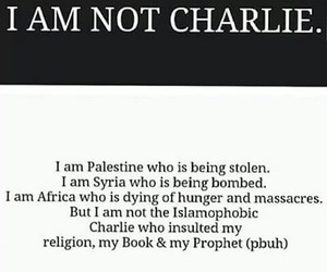 france, islam, and palestine image