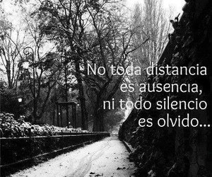 frases, forget, and distance image