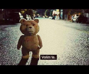 volim te, love, and TED image