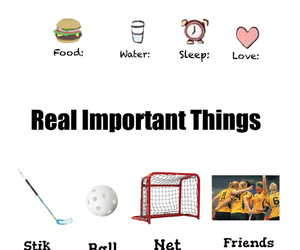 lite and floorball image