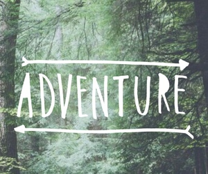 adventure, wallpaper, and forest image