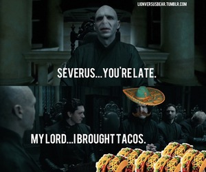 harry potter, tacos, and funny image