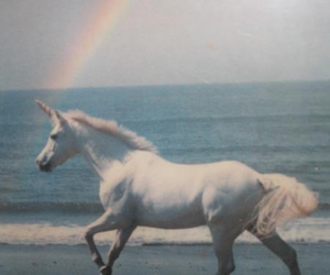 unicorn, rainbow, and sea image