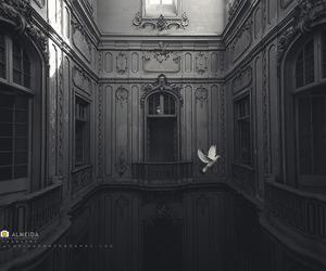 abandoned, alone, and ashes image